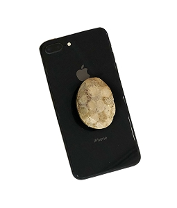 Oval Fossil Coral Gemstone Cell Phone Socket